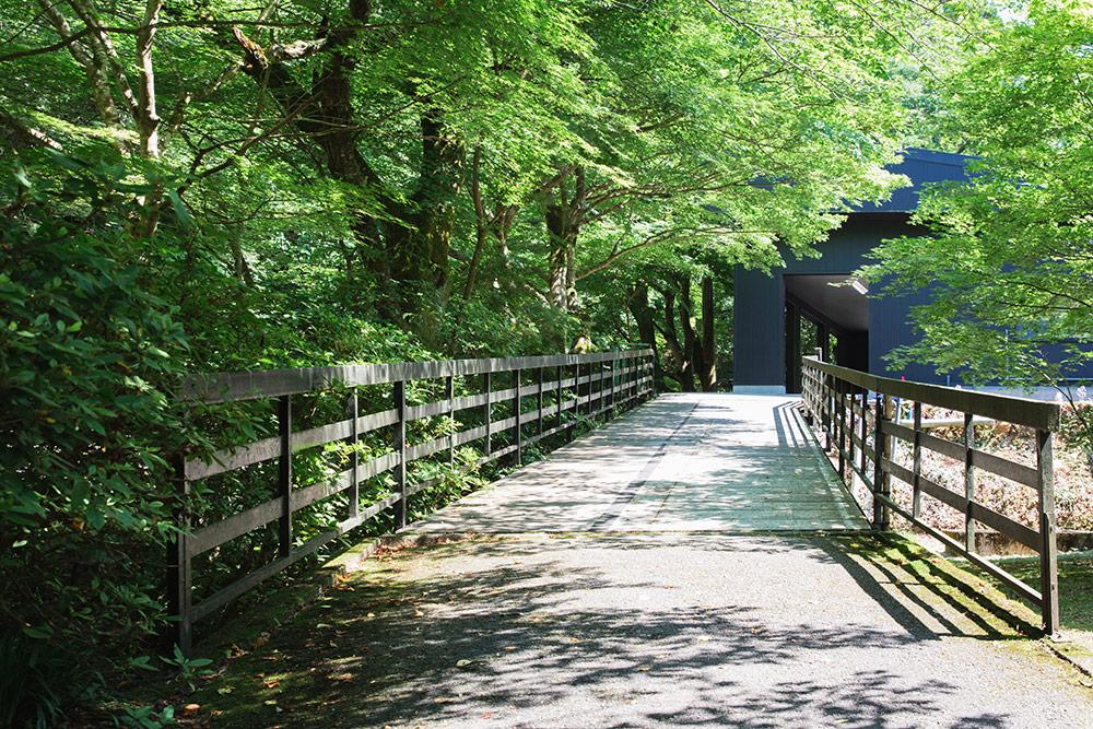 養鱒センターきたがわと隣接している滋賀県醒井養鱒場のご紹介